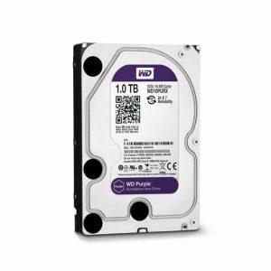 Ổ cứng Western Purple 1TB